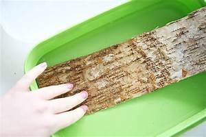 Holz Schnell Trocknen : diychallenge pflanzen holz pflanzt pfe mit birkenrinde mein feenstaub ~ Frokenaadalensverden.com Haus und Dekorationen