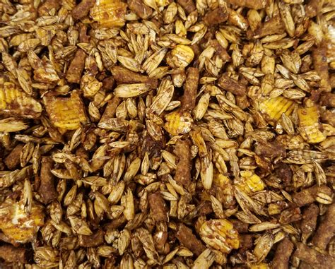 textured horse pelleted feeds protein feed horses performance maintain increased fat added