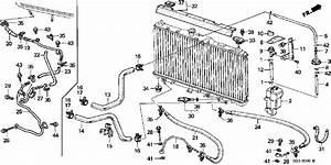 Transmission Coolant Lines