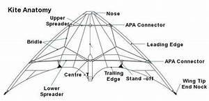 Anatomy Of A Stunt Kite