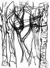 Bark Tree Drawing Getdrawings Texture sketch template