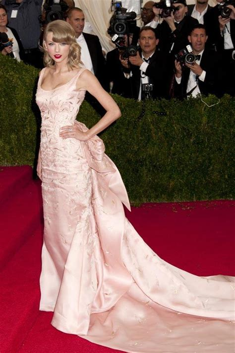 Taylor Swift's Met Gala gown attacked by cat
