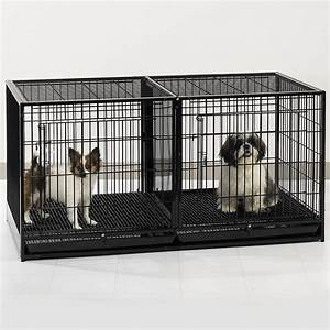 Review proselect steel modular cage with plastic tray for Dog kennel for 2 dogs