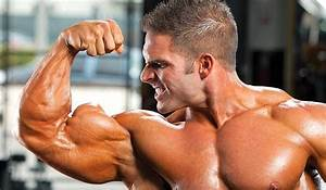 Body Building And Steroids  The Five Basic Stipulations Of Proper Steroid Cycles And Responsible