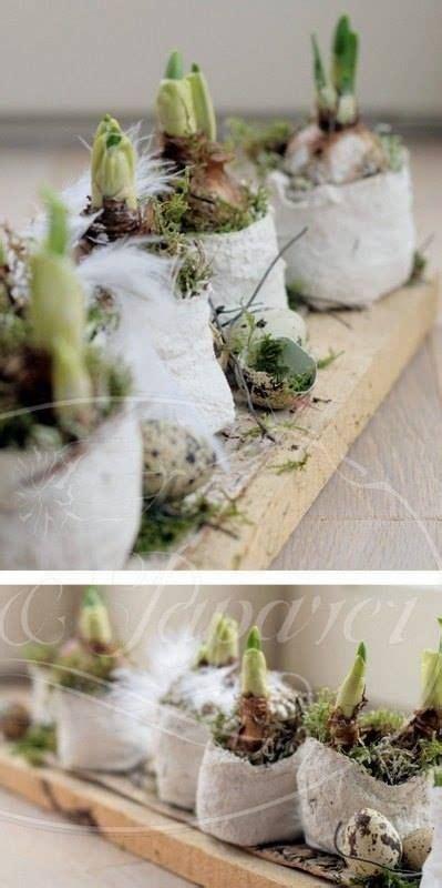 gipsbinden selber machen m anleitung bilder pflanze moos dann mit gipsbinden