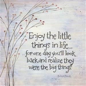 Enjoy The Little Things - Quotes A Day