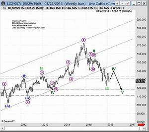 Live Cattle A Cure For Mad Price Disease Elliott Wave
