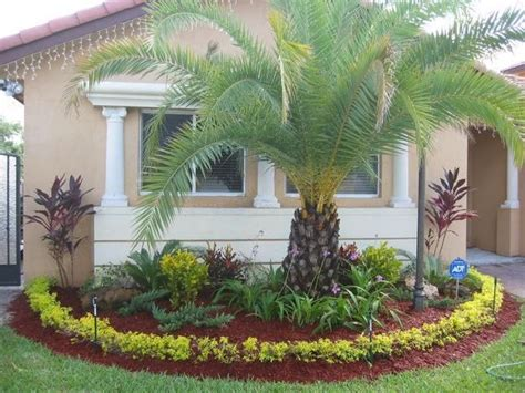 florida tropical landscaping ideas 486 best tropical florida gardening images on pinterest