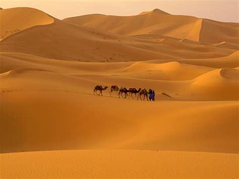 World Visits Sahara Desert World Largest Hot Desert