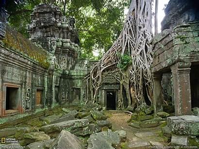 Ruins Ancient Wallpapersafari Geographic Ta Prohm National