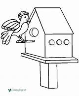 Coloring Pages Birds Bird Birdhouse Printable Adults Animals Popular sketch template
