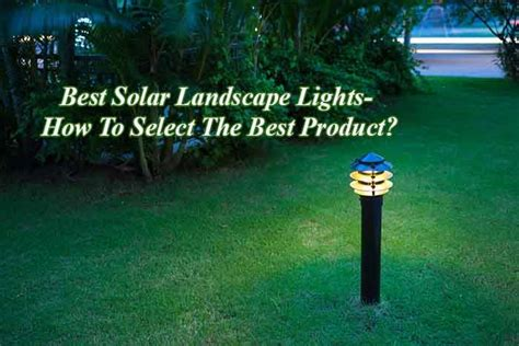 best solar landscape lights how to select the best