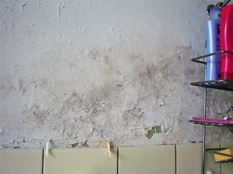 peinture ecaillee salle de bain forum bricolage peinture conseils pour repeindre une salle de bain