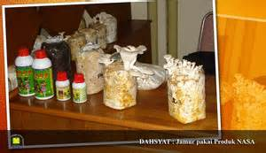 Distributor Lu Jamur Avatar budidaya tanaman karet distributor produk pertanian dan