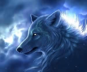 wolf guardian lobo hermoso fondo wallpaper