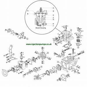 Bosch Ve Throttle Shaft Nut
