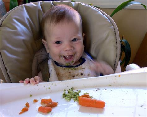 Baby Led Solids A Stress Free Alternative To Introduce