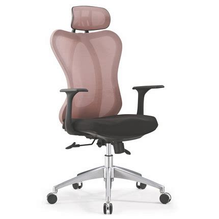 deluxe raynor ergohuman mesh back managerial office chair
