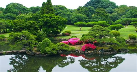 shinjuku gyoen national garden shinjuku gyoen national garden japan tourist attractions