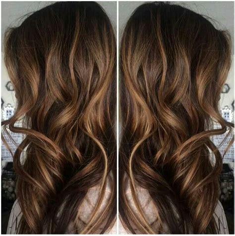 brown hair  subtle honeycaramel highlights fix