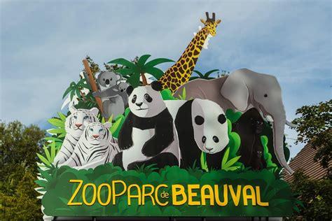 Les télécabines du zoo de beauval bientôt en service. Comment bien visiter le zoo de Beauval