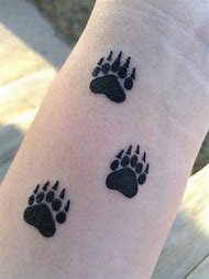 Best Bear Paw Print - ideas and images on Bing | Find what you\'ll love