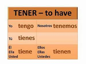 Tener And Its Expressions Tener Conjugation Learning
