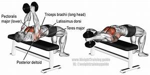 Dumbbell Pullover Exercise Instructions And Video