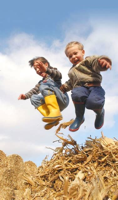 kids  play  children leap   bale  cornstalks