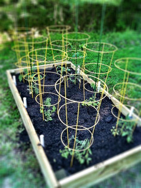 raised beds gardens gardening archives bell alimento bell alimento