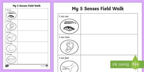 five senses field walk worksheet science habitats australian curriculum