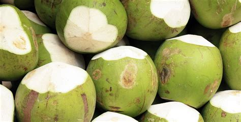 Fresh Photo by Top Health Benefits Of Fresh Coconuts The Benefits Of