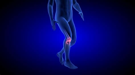 Knee Pain Animation. Blue Human Anatomy Body 3d Scan