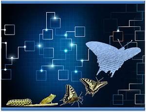 The Digital Metamorphosis – Transitioning Successfully