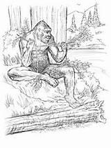 Coloring Bigfoot Sasquatch Sketches sketch template