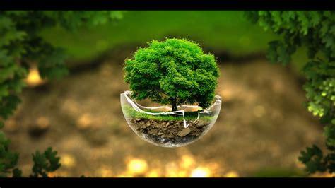 green nature high definition wallpaper