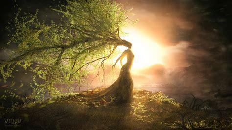 Fantasy Art Willow Landscapes Mood Trees Sunset Sunrise