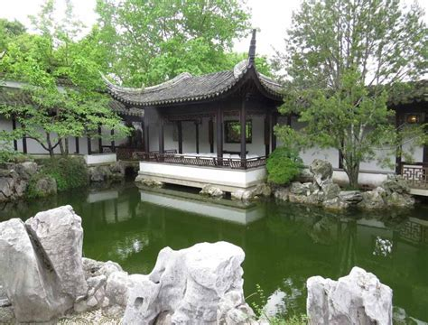 plunus mume blossom and fish in scholar s garden