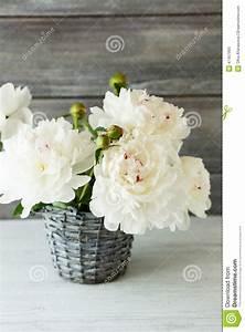 Pfingstrosen In Der Vase : wei e pfingstrosen in einem vase ~ Buech-reservation.com Haus und Dekorationen