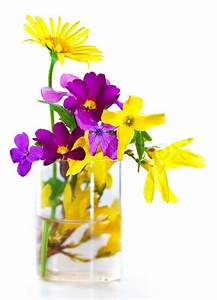 Spring flower bouquet isolated over white background ...
