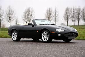 Jaguar Xk8 Cabriolet : looking for a jaguar xk8 convertible call lex classics 31 416 342 474 ~ Medecine-chirurgie-esthetiques.com Avis de Voitures