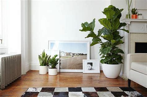 easy ways  refresh  home interior design decorilla
