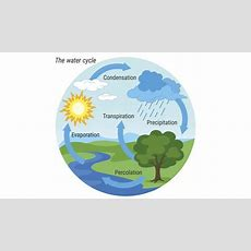 What Is The Hydrologic Cycle? Worldatlascom