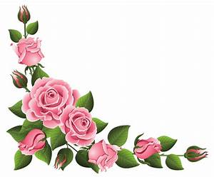 "Search Results for ""Christmas Flowers Borders Png ..."