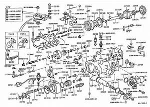 Bosch Diesel Injection Pump Diagram