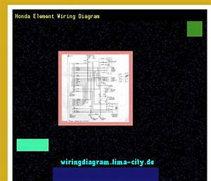 Honda Element Wiring Diagram  Wiring Diagram 185658