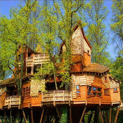 Tree Houses Or Houses In Trees?