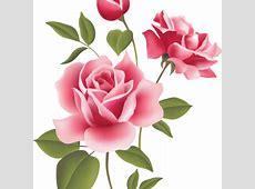 2000+ Wallpaper Bunga Mawar Bergerak  Paling Baru