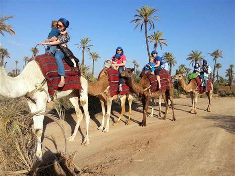 Marrakech camel ride - Marrakech camel trekking - €29 pp!!