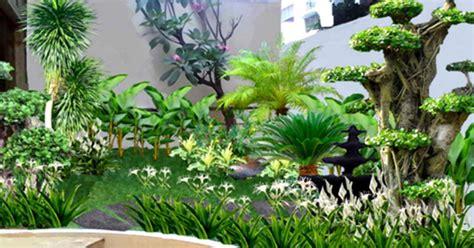 nama tanaman hias  taman